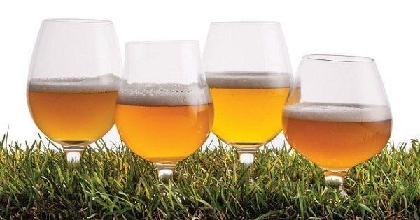 Cervezas Saison
