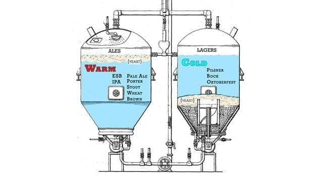 Proceso de fermentación ale y lager