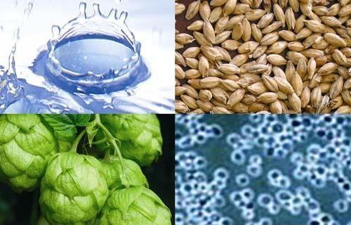 Ingredientes cerveza: agua, malta, lúpulo, levadura